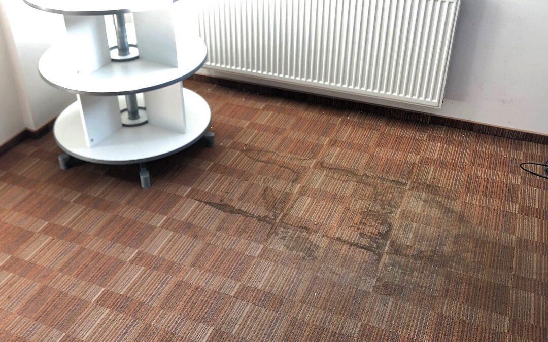 Költséghatékony szőnyegtisztítás az Alu-Redőny Kft.-nél